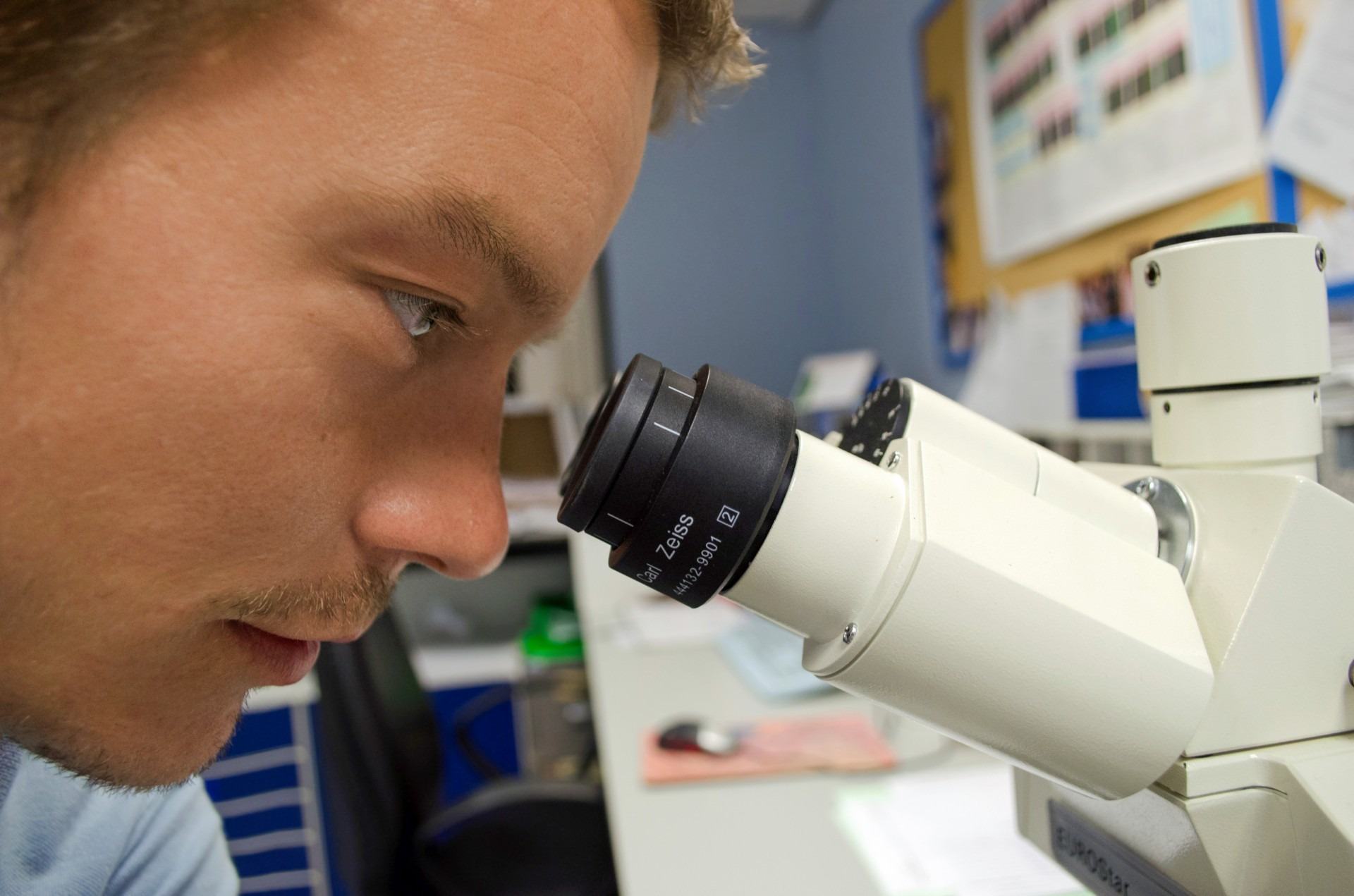 compuestos antimicrobianos considerados como agentes activos catiónicos potentes